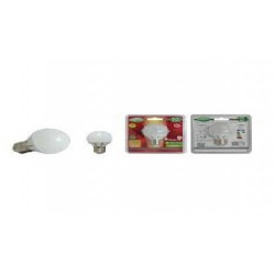 Ampoule led E27 - Bulb - 6W - 6000K ( blister )