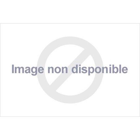 Kit de démarrage XOIL 2 temps pour tronçonneuse - 8309002